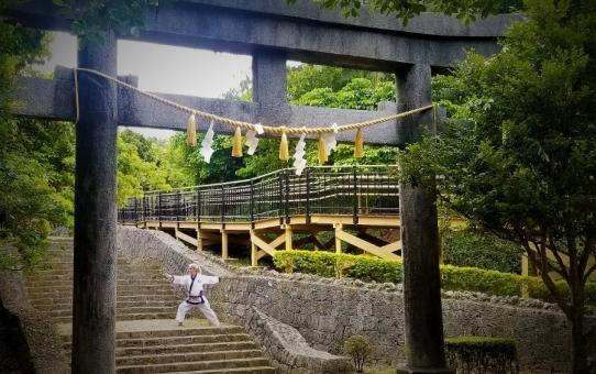 Journey To Okinawa