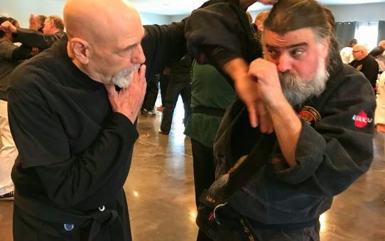 Combat Hapkido Seminar In Red Hook, NY